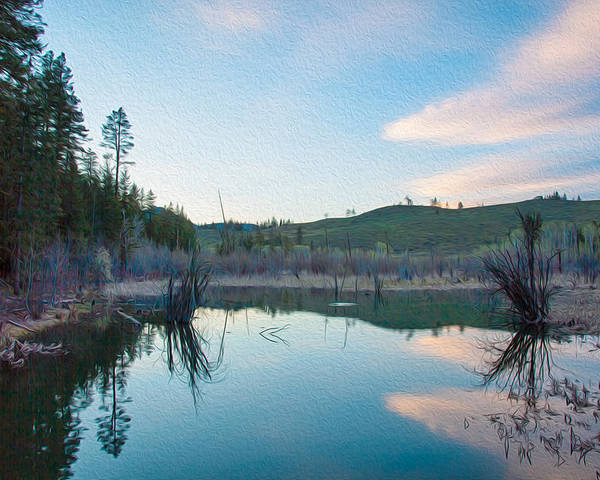North Cascades Poster featuring the painting Early Sunset On A Beaver Pond by Omaste Witkowski