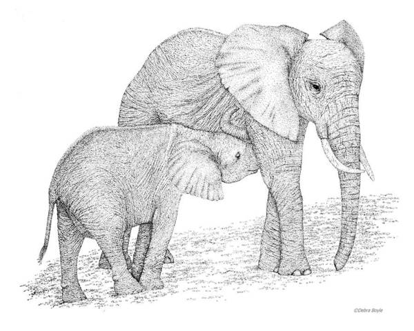 Elephant Poster featuring the drawing Elephant Mother by Debra Boyle
