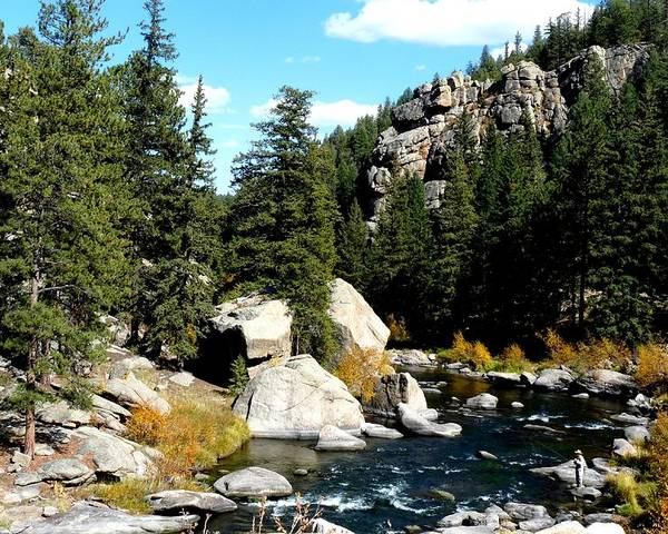 Colorado Poster featuring the photograph Eleven Mile Canyon Stream by Marilyn Burton