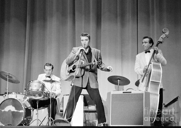 Elvis Presley Poster featuring the photograph Elvis Presley with D.J. Fontana and Bill Black 1956 by The Harrington Collection