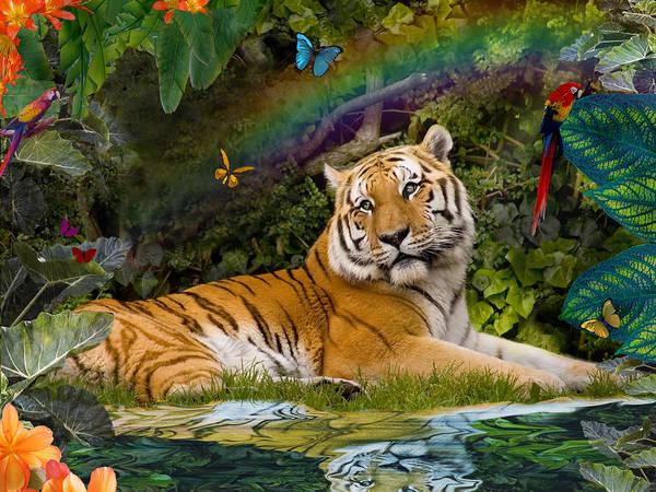 Alixandra Mullins Poster featuring the photograph Enchaned Tigress by Alixandra Mullins