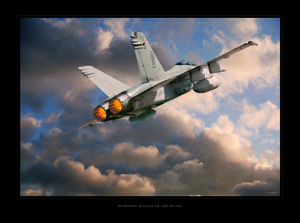 F-18 Hornet Framed Prints Poster featuring the photograph Fa-18d Hornet by Larry McManus