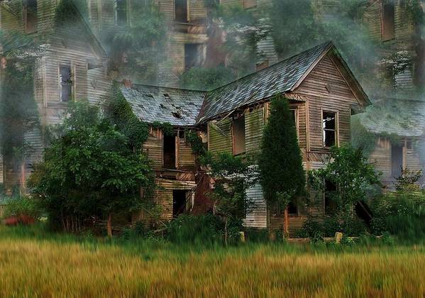 Abandoned House Poster featuring the photograph Faded Dreams by Julie Dant