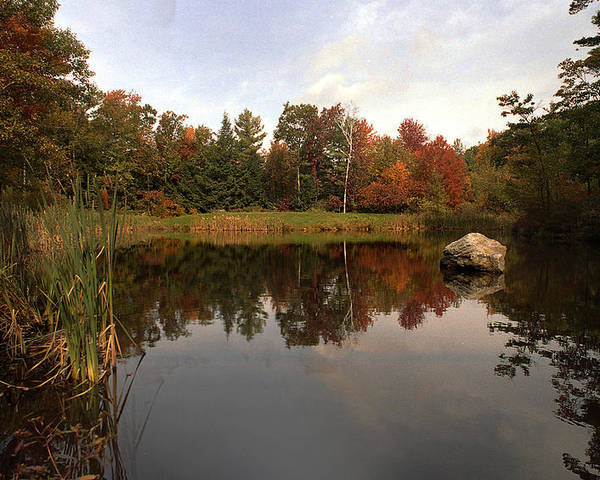 Fall Poster featuring the photograph Fall Pond by Skip Willits