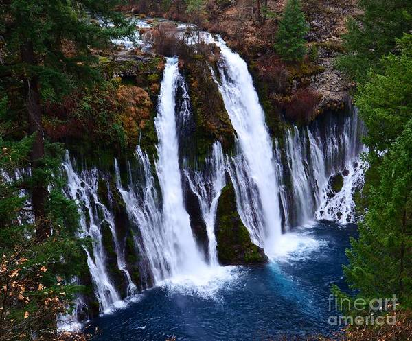 Waterfall Poster featuring the photograph Falls by Lillian Singer