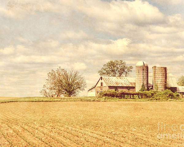 Farm Poster featuring the photograph Farm And Fields by Olivier Le Queinec