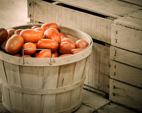Bushel Poster featuring the photograph Farmers Market Plum Tomatoes by Julie Palencia
