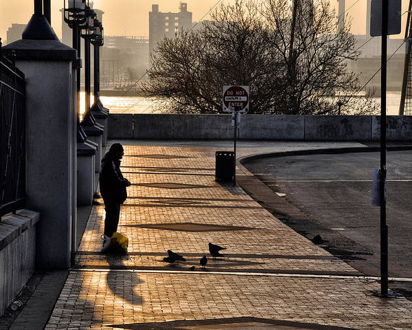 Feeding The Birds At Dawn Poster featuring the photograph Feeding The Birds At Dawn by Bill Cannon