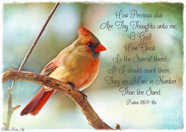 Cardinal Poster featuring the photograph Female Northern Cardinal With Verse by Debbie Portwood