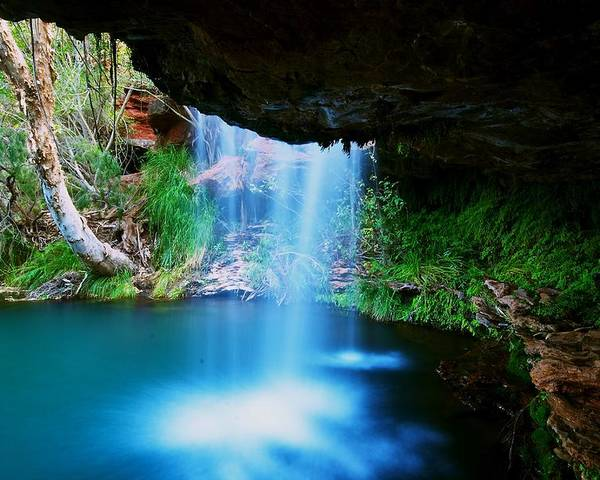 Australia Poster featuring the photograph Fern Pool Falls by Aaron Fisher