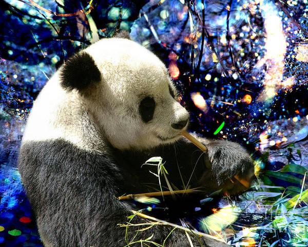 Festive Panda Poster featuring the photograph Festive Panda by Mariola Bitner