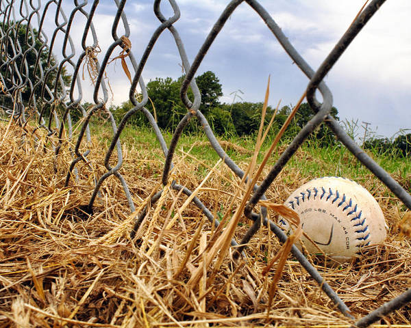 Baseball Poster featuring the photograph Field Of Dreams by Jason Politte