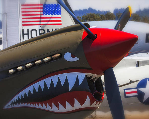 Curtiss P-40n-5 Kittyhawk Poster featuring the photograph Fierce Tiger by Garry Gay
