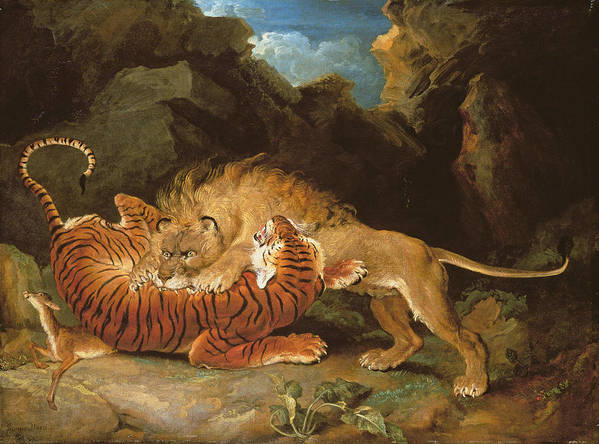 Wild Animals Poster featuring the painting Fight Between A Lion And A Tiger, 1797 by James Ward