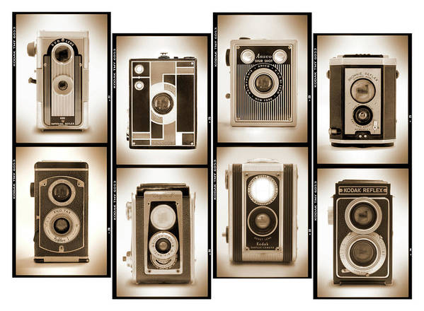 Vintage Cameras Poster featuring the photograph Film Camera Proofs 4 by Mike McGlothlen