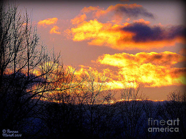 Landscape Poster featuring the photograph Fire In The Sky by Rennae Christman