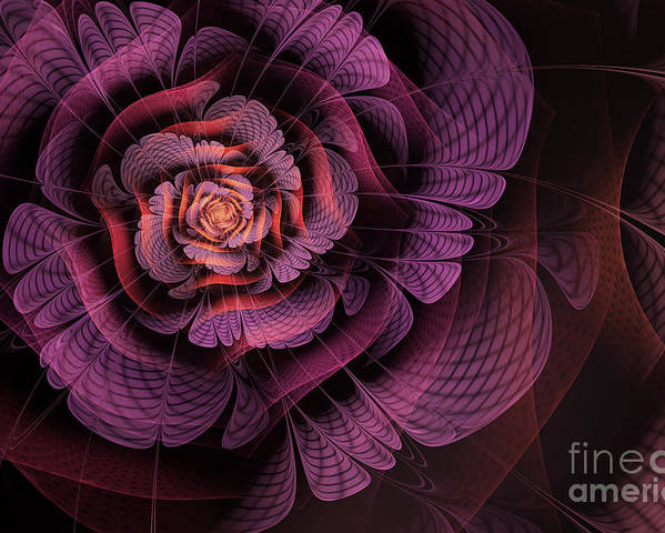 Purple Fractal Flower Poster featuring the digital art Fleur Pourpre by John Edwards