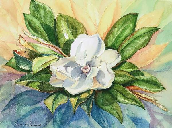 Magnolia Poster featuring the painting Floating Magnolia by Trish Bilich