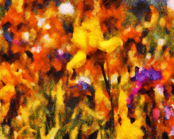 Iris Poster featuring the digital art Flower - Iris - Orchestra by Mike Savad
