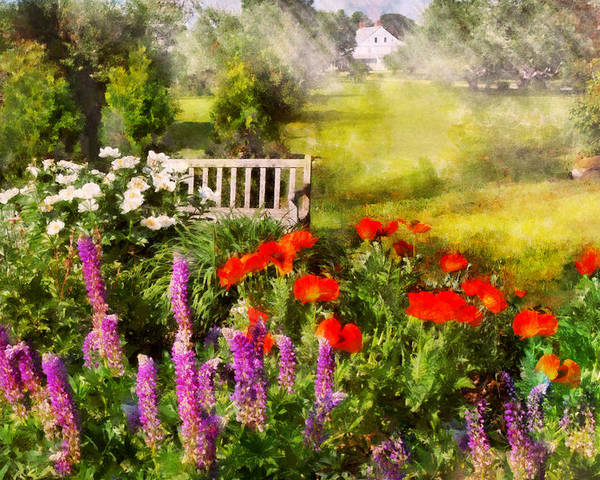 Savad Poster featuring the photograph Flower - Poppy - Piece Of Heaven by Mike Savad