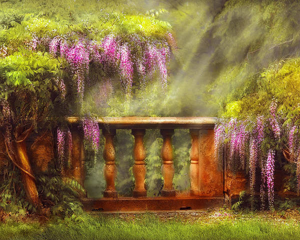 Savad Poster featuring the photograph Flower - Wisteria - A Lovers View by Mike Savad