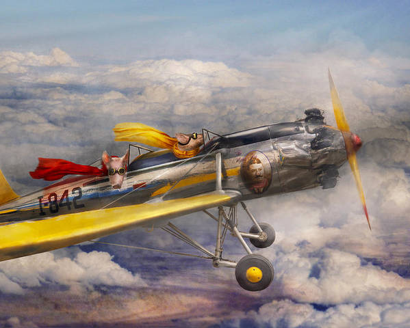 Pig Poster featuring the photograph Flying Pig - Plane - The Joy Ride by Mike Savad