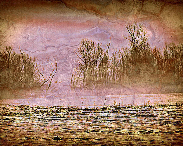 Landscape Poster featuring the photograph Fog Abstract 3 by Marty Koch