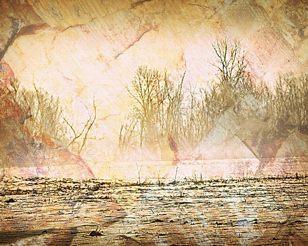 Landscape Poster featuring the photograph Fog Abstract 4 by Marty Koch