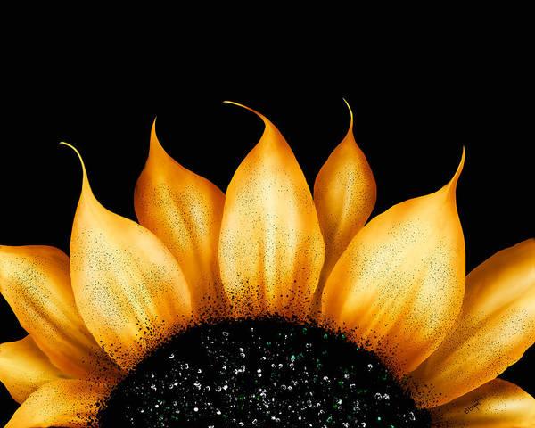 Sunflower Poster featuring the painting Folk Art Sunflower by Brenda Bryant