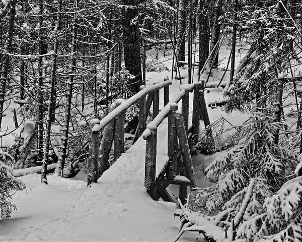 Maine Poster featuring the photograph Foot Bridge In Winter by David Rucker