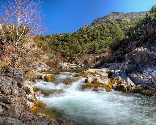 Rapids Water Rocks Color Sky Blue Green Red Outdoors Trees Bushes Fossil Creek Child's Camp Verde Verde River Northern Arizona Landscapes Beauty Hdr Mountains Poster featuring the photograph Force Of Beauty by Thomas Todd