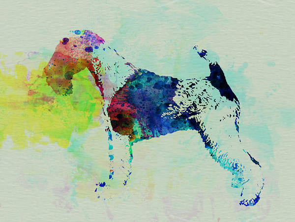 Fox Terrier Poster featuring the painting Fox Terrier Watercolor by Naxart Studio