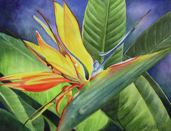 Bird Of Paradise Poster featuring the painting Free Bird by Lorraine Ulen