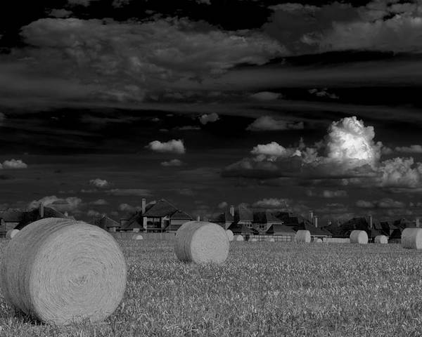 Hay Bales Poster featuring the photograph Frisco Dream by Darryl Dalton