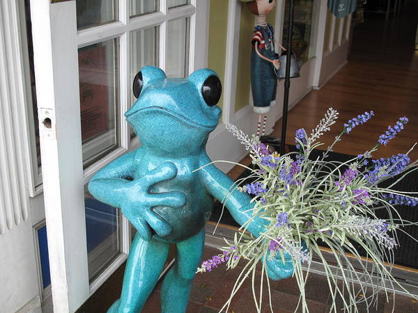 Frog Poster featuring the photograph Frog Suitor by Barbara McDevitt