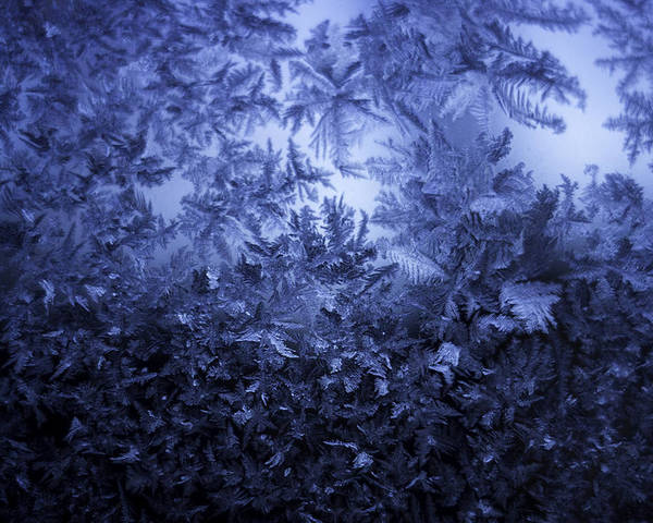 Ice Poster featuring the photograph Frost on window #3 by Nathan Seavey