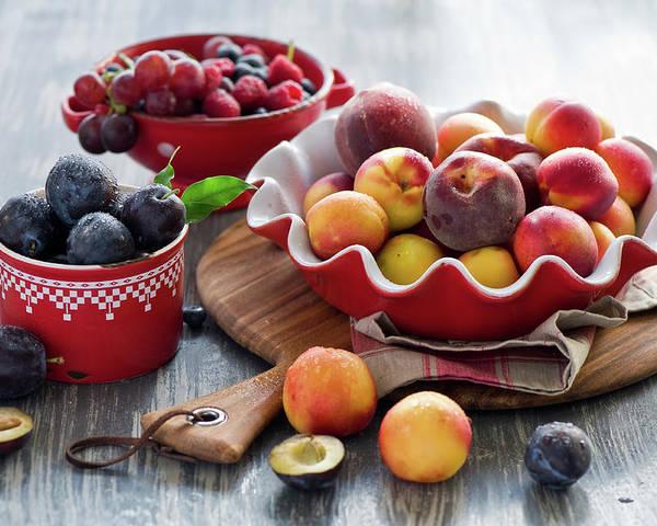 Plum Poster featuring the photograph Fruits by Verdina Anna