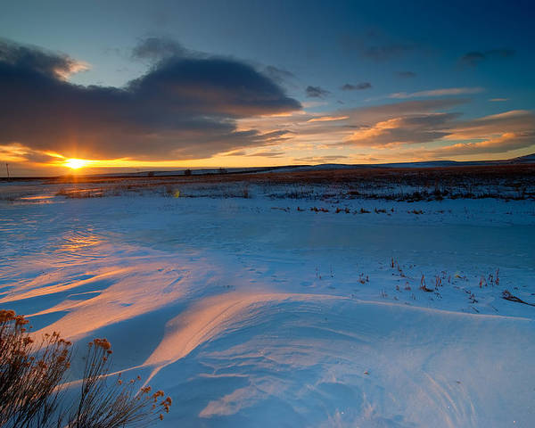 Colorado Poster featuring the photograph Ft Collins Snow Sparkles by Preston Broadfoot