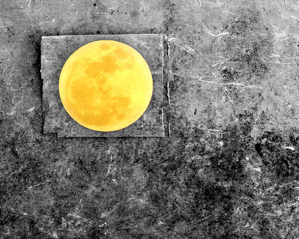 Full Moon Poster featuring the photograph Full Moon by Rebecca Sherman