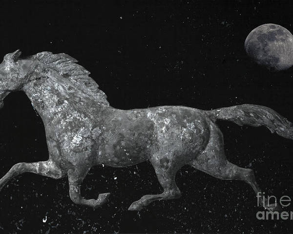 Weathervane Poster featuring the photograph Galloping Through The Universe by John Stephens