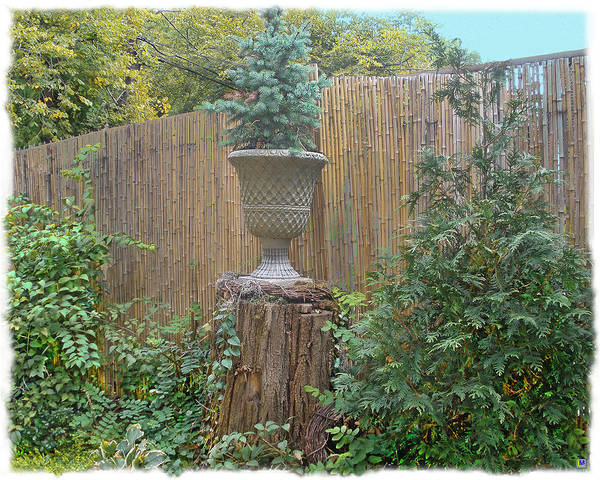 Bamboo Fence Poster featuring the photograph Garden Decor 2 by Muriel Levison Goodwin