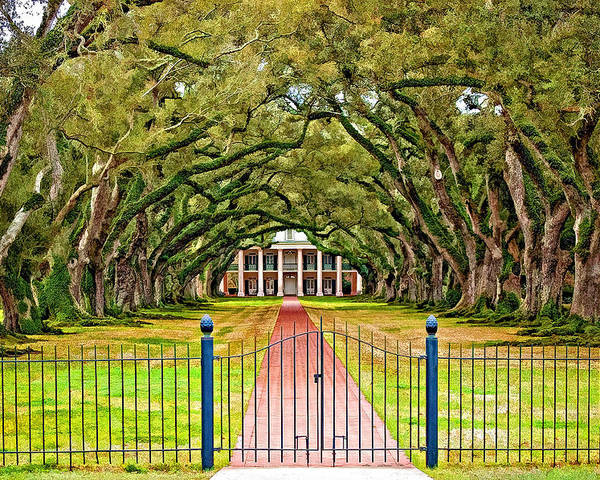 Oak Alley Plantation Poster featuring the photograph Gateway To The Old South Paint by Steve Harrington