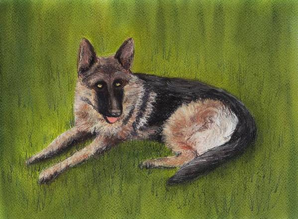 Look Poster featuring the painting German Shepherd by Anastasiya Malakhova