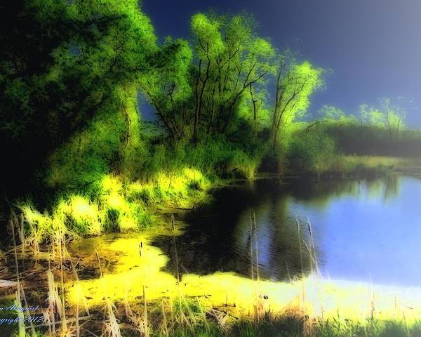 Pond Poster featuring the photograph Glowing Pond On A Foggy Night by Ann Almquist