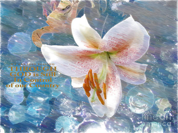 White Lily Poster featuring the photograph God Is Still In Control by Beverly Guilliams