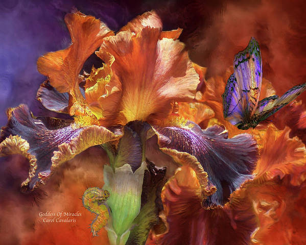Iris Poster featuring the mixed media Goddess Of Miracles by Carol Cavalaris