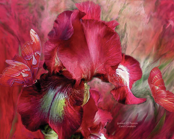 Iris Poster featuring the mixed media Goddess Of Passion by Carol Cavalaris