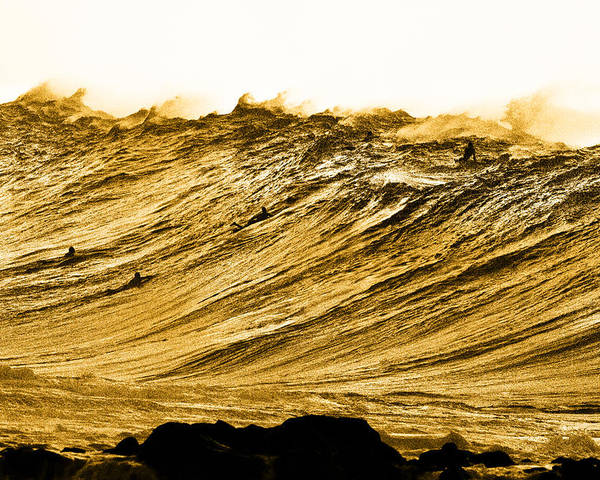 Surf Big Wave Poster featuring the photograph Gold Nugget by Sean Davey