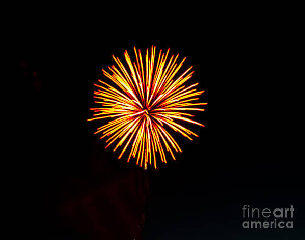 Fireworks Poster featuring the photograph Golden Fireworks Flower by Robert Bales