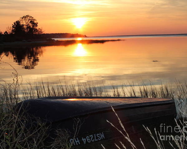 Golden Sunset In November Poster featuring the photograph Golden Sunset by John Doble